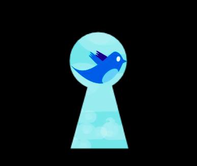 twitter-secretos